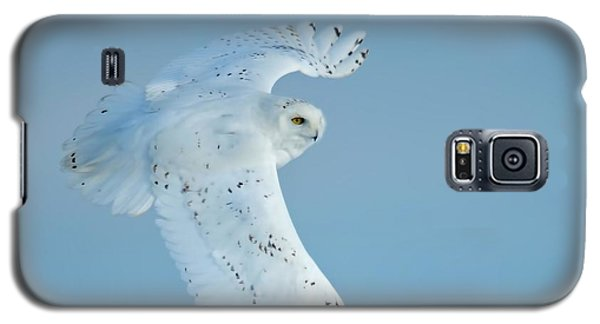 Snowy Against Blue Sky Galaxy S5 Case by CR  Courson