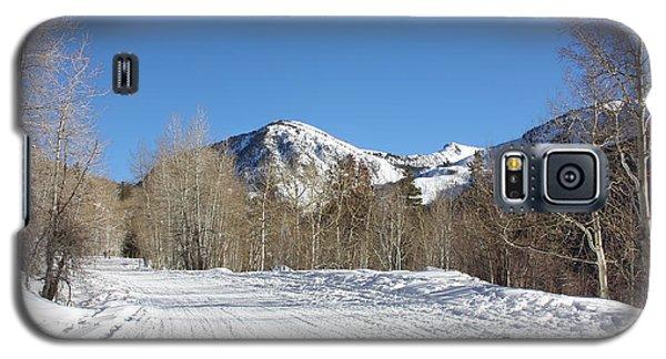 Snowy Aspen Galaxy S5 Case