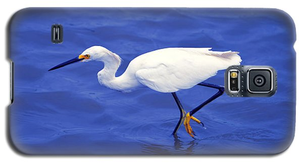 Galaxy S5 Case featuring the photograph Snowy Egret 1 by Bill Holkham