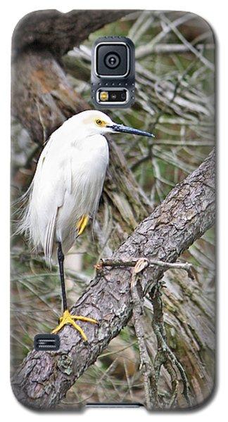Snowy Egret 1 Galaxy S5 Case