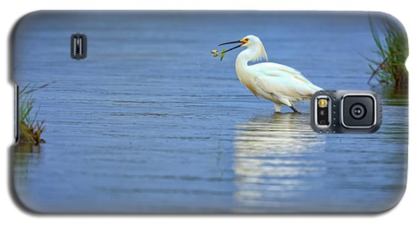 Snowy Egret At Dinner Galaxy S5 Case by Rick Berk