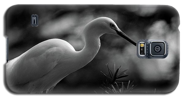 Galaxy S5 Case featuring the photograph Snowy Egret Bw by Travis Burgess