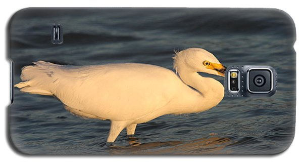 Galaxy S5 Case featuring the photograph Snowy Egret By Sunset by Christiane Schulze Art And Photography