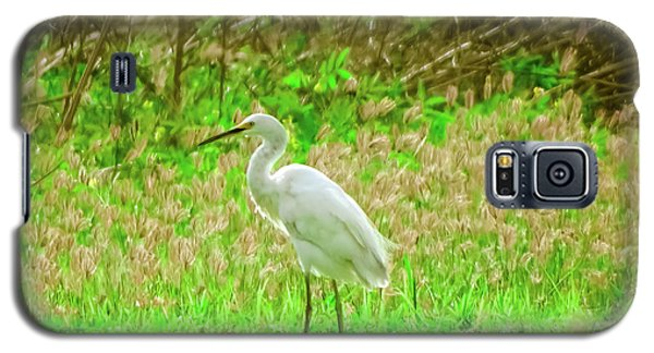 Snowy Egret  Galaxy S5 Case