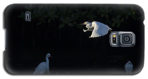 Snowy Egret Gliding In The Morning Light Galaxy S5 Case