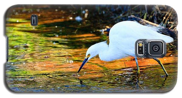 Snowy Egret Hunting 2 Galaxy S5 Case