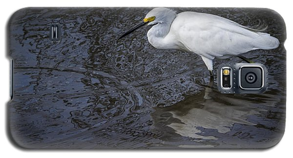 Snowy Egret Hunting Galaxy S5 Case