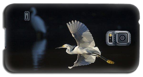 Snowy Egret In Flight In The Morning Light Galaxy S5 Case