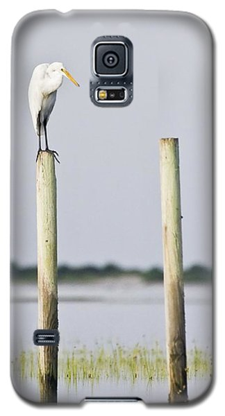 Galaxy S5 Case featuring the photograph Snowy Egret On Pilings by Bob Decker