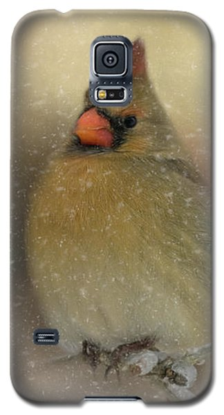 Snowy Female Cardinal Galaxy S5 Case