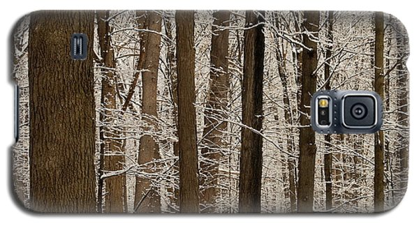 Snowy Forest Elevation Galaxy S5 Case