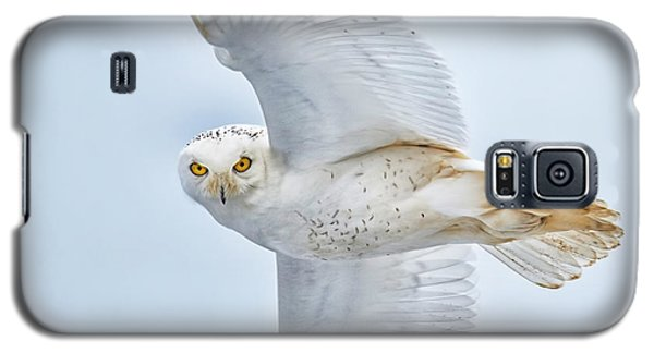 Snowy Glance Galaxy S5 Case by CR  Courson
