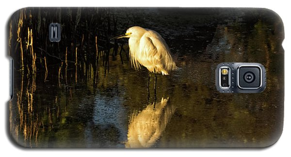 Snowy Kissed By Last Light Galaxy S5 Case