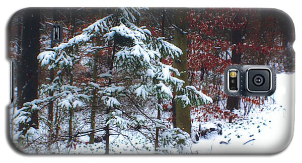 Galaxy S5 Case featuring the photograph Snowy Little Fir by Sandy Moulder