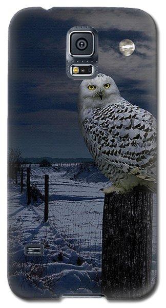 Snowy Owl On A Winter Night Galaxy S5 Case