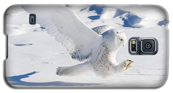 Galaxy S5 Case featuring the photograph Snowy Owl Pouncing by Rikk Flohr