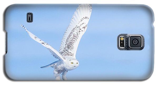 Galaxy S5 Case featuring the photograph Snowy Owls Soaring by Rikk Flohr