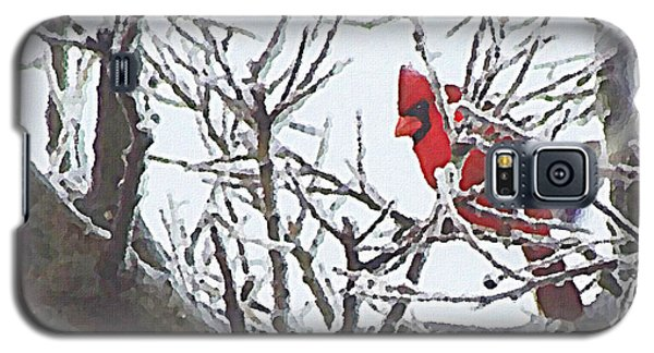 Snowy Red Bird A Cardinal In Winter Galaxy S5 Case