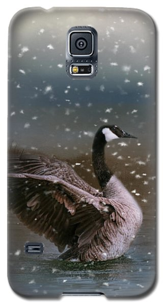 Snowy Swim Galaxy S5 Case by Jai Johnson