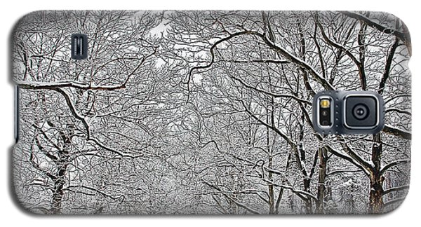 Galaxy S5 Case featuring the photograph Snowy Treeline by Aimee L Maher Photography and Art Visit ALMGallerydotcom