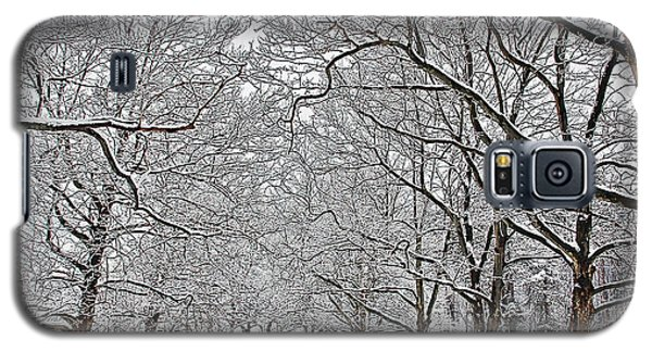 Snowy Treeline Galaxy S5 Case by Aimee L Maher Photography and Art Visit ALMGallerydotcom
