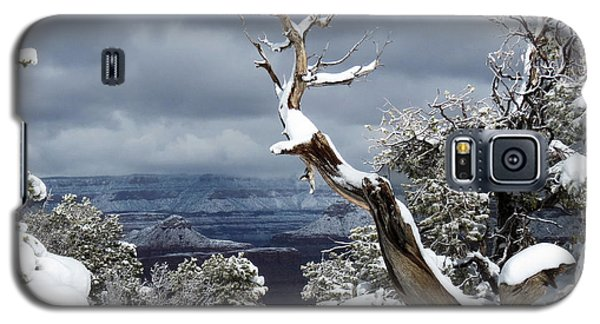 Galaxy S5 Case featuring the photograph Snowy View by Laurel Powell