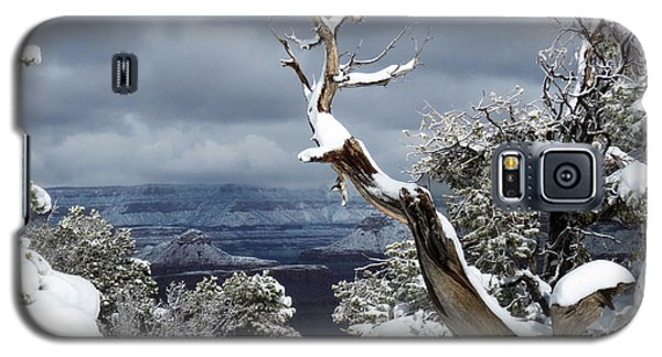 Snowy View Galaxy S5 Case by Laurel Powell