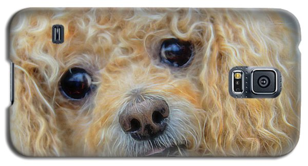 Galaxy S5 Case featuring the photograph Snuggles by Steven Richardson