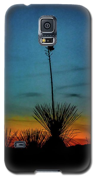 Soaptree Yucca At Sunset Galaxy S5 Case