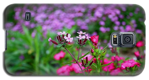 Galaxy S5 Case featuring the photograph Soapwort And Pinks by Kathryn Meyer