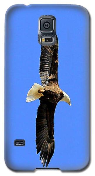 Soar Into The Blue II Galaxy S5 Case