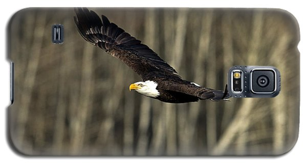 Soaring Glory Galaxy S5 Case