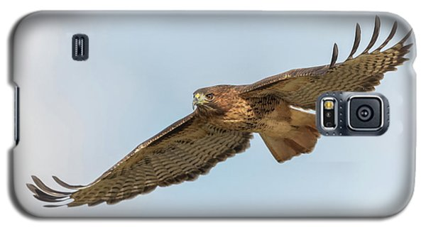 Galaxy S5 Case featuring the photograph Soaring Hawk 2 by Angie Vogel