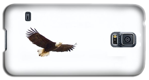 Soaring High 0881 Galaxy S5 Case by Michael Peychich