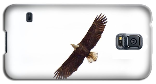 Soaring High 0885 Galaxy S5 Case by Michael Peychich