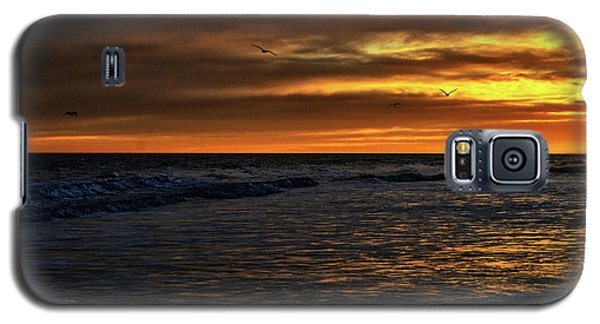 Soaring In The Sunset Galaxy S5 Case by Kelly Reber