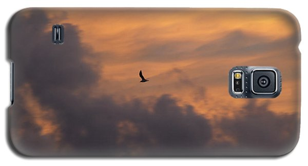 Galaxy S5 Case featuring the photograph Soaring Into The Sunset by Richard Bryce and Family