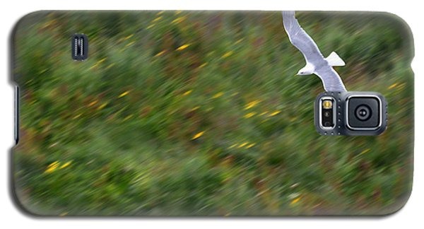 Galaxy S5 Case featuring the photograph Soaring Seagull by Joe Bonita