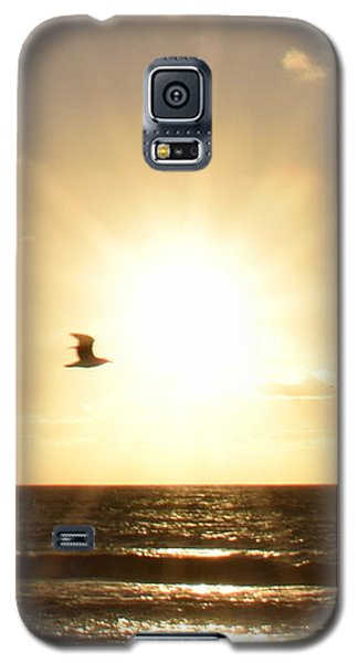 Soaring Seagull Sunset Over Imperial Beach Galaxy S5 Case