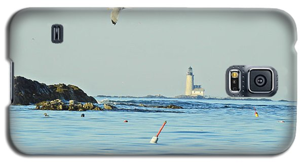 Soaring Seagull Galaxy S5 Case