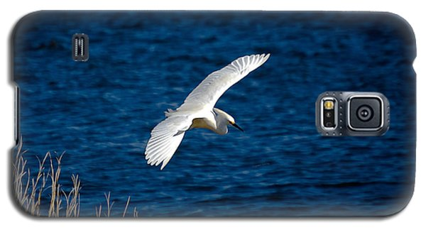 Soaring Snowy Egret  Galaxy S5 Case by DigiArt Diaries by Vicky B Fuller