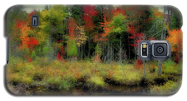 Galaxy S5 Case featuring the photograph Soft Autumn Color by David Patterson