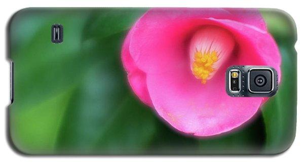 Soft Focus Flower 1 Galaxy S5 Case