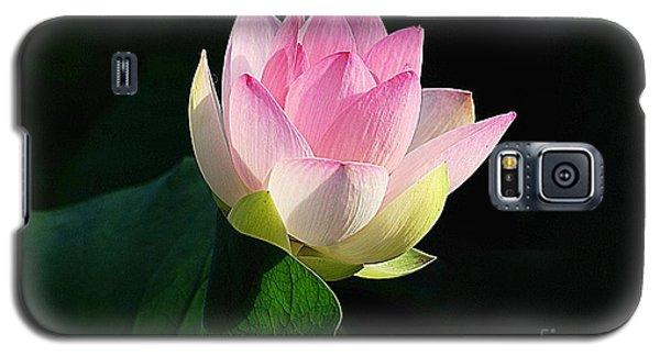 Soft Light  Galaxy S5 Case by John S