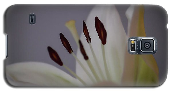 Soft Lily Galaxy S5 Case