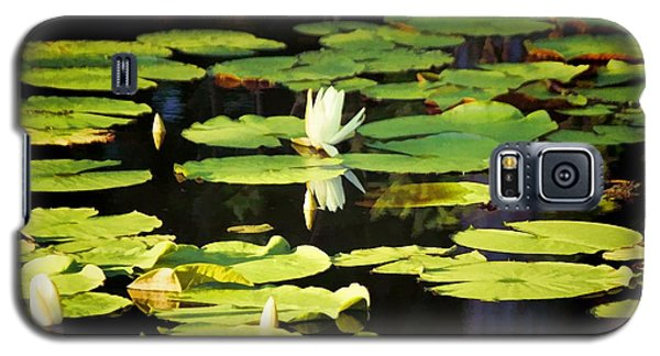 Galaxy S5 Case featuring the photograph Soft Morning Light by Jan Amiss Photography