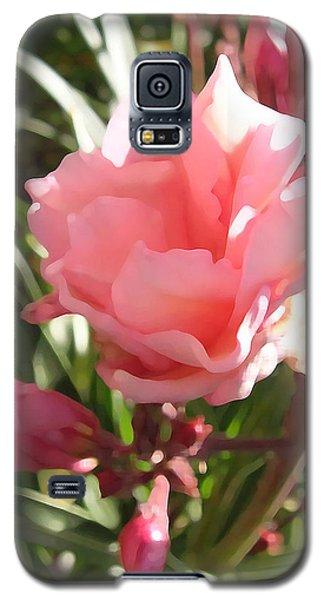 Soft Pink Blush Galaxy S5 Case