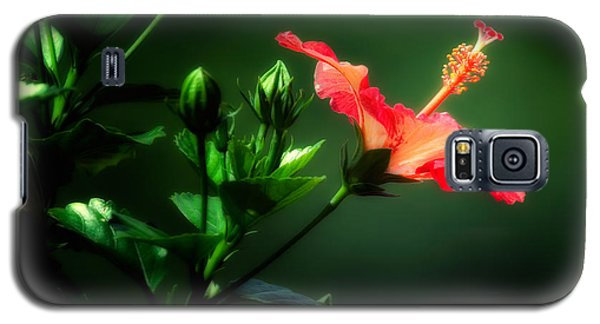 Soft Red Hibiscus Plant Galaxy S5 Case