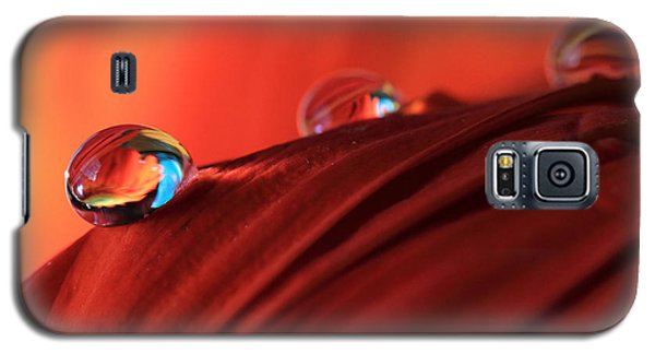 Soft Red Petals With Water Drops Galaxy S5 Case