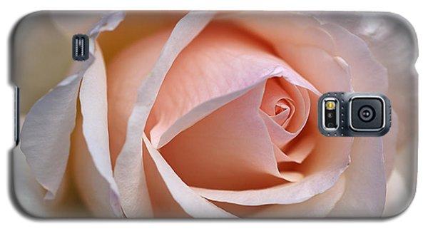 Soft Rose Galaxy S5 Case